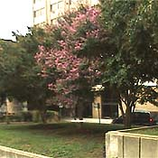 DDTC HQ