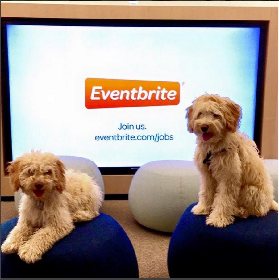 Eventbrite Instagram Post via https://www.instagram.com/p/032C0eyzj7/?taken-by=eventbrite [Fair Use]