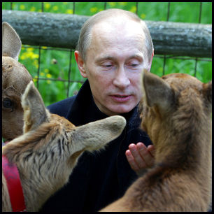 Putin Feeds Animals by premier.gov.ru [CC-BY-3.0 (http://creativecommons.org/licenses/by/3.0)], via Wikimedia Commons http://commons.wikimedia.org/wiki/File%3APutin_animals.jpeg